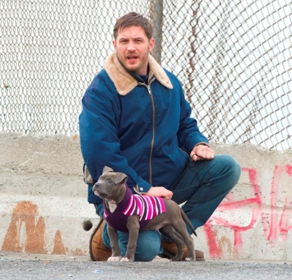 Tom Hardy on the set of 'Animal Rescue', filming in Brooklyn, NYC